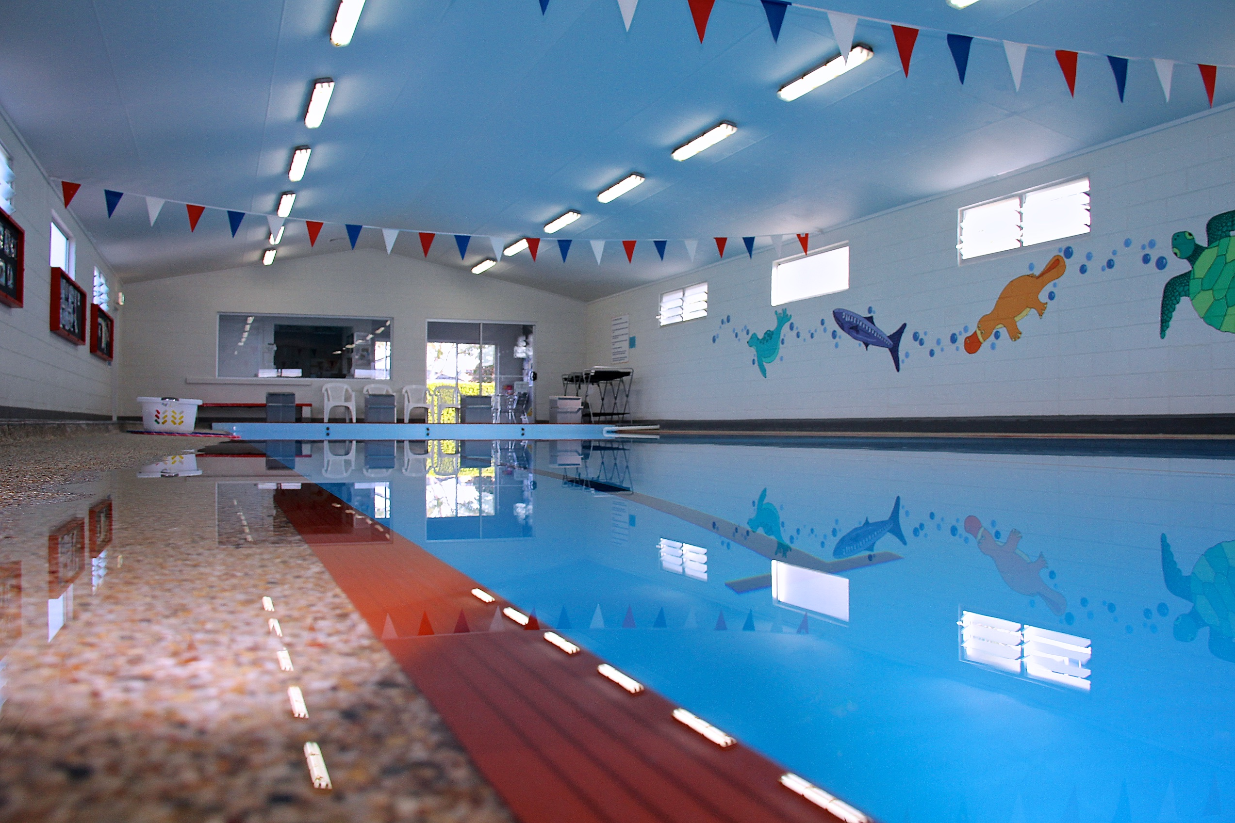 Learn To Swim At Robina | Swimming Lessons ... - Kingswim